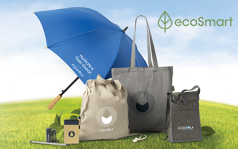 Introducing EcoSmart Products